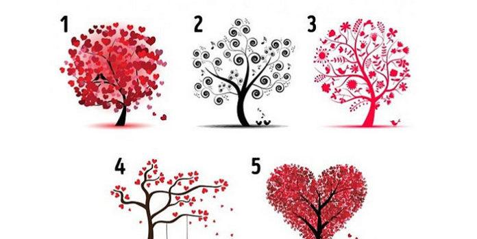 TEST: Welcher Baum zieht Sie am meisten an? Die Antwort verrät Ihnen wie Sie in Sachen Liebe sind!