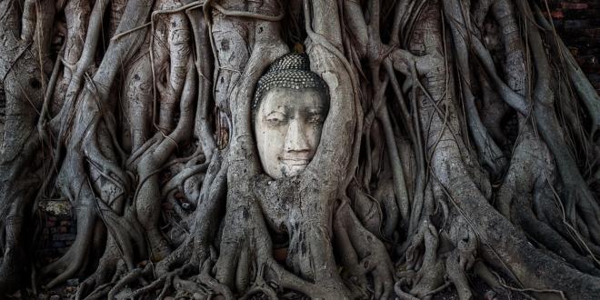Laut Buddha sind das die 6 Regeln der Liebe