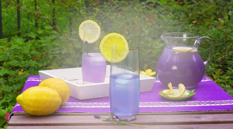 Die Lavendel-Limonade löst Anspannung und Angst, steigert Aufmerksamkeit und Konzentration