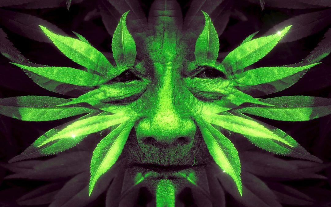 Ayahuasca und Animismus – Ein Heilmittel für den modernen Materialismus?
