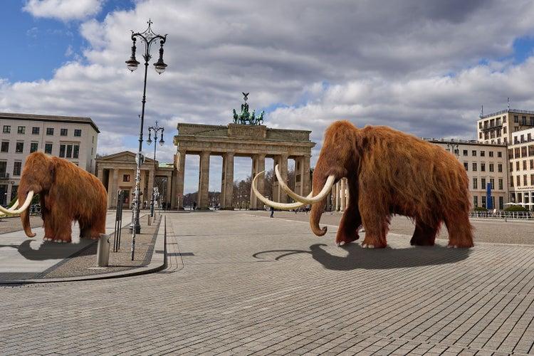 Natur erholt sich wegen Corona: Erste Mammuts in Deutschland gesichtet !!